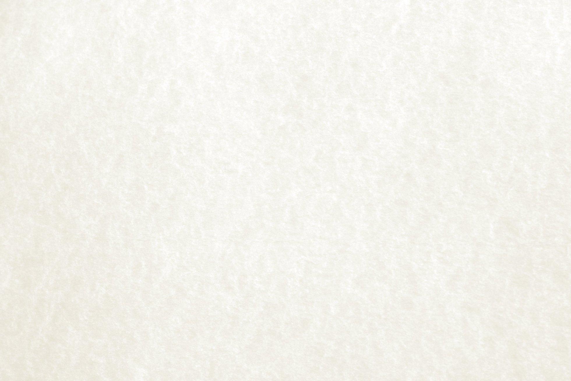 White Parchment Paper Texture 1